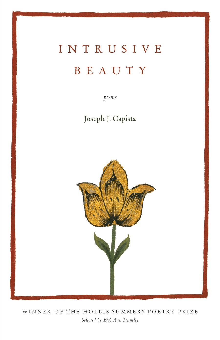 The front cover of Intrusive Beauty